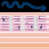img-effetti-RF3